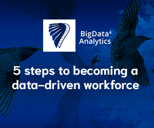 5 steps to becoming a data-driven workforce