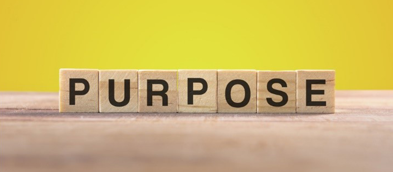 What's the point? The search for purpose at work