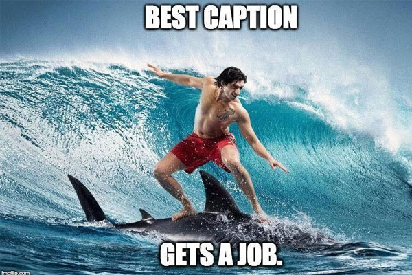 'Best caption gets a job' - photo used to recruit on LinkedIn