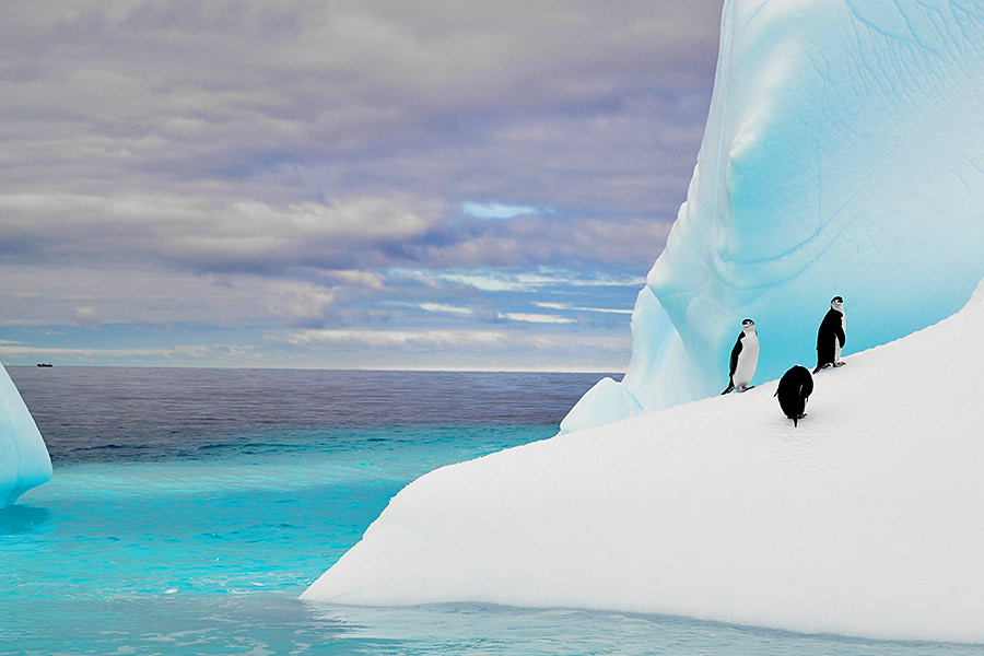 Antarctic opening offers recruiters extreme candidate relocation test