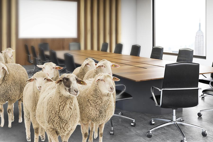 HR needs to 'stop bleating' about being on the Board
