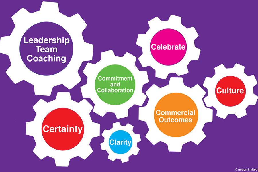 The 6 C's of Successful Leadership Team Coaching