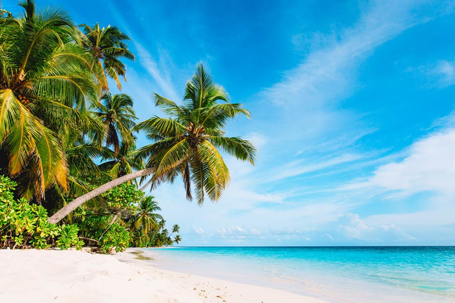 Could you recruit for this £100k dream job in Barbados?