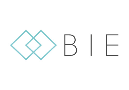 BIE strengthens hire practice with interim division hire