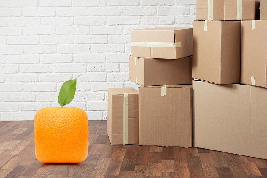 Warehouse replaces human workers with 'little orange' robots