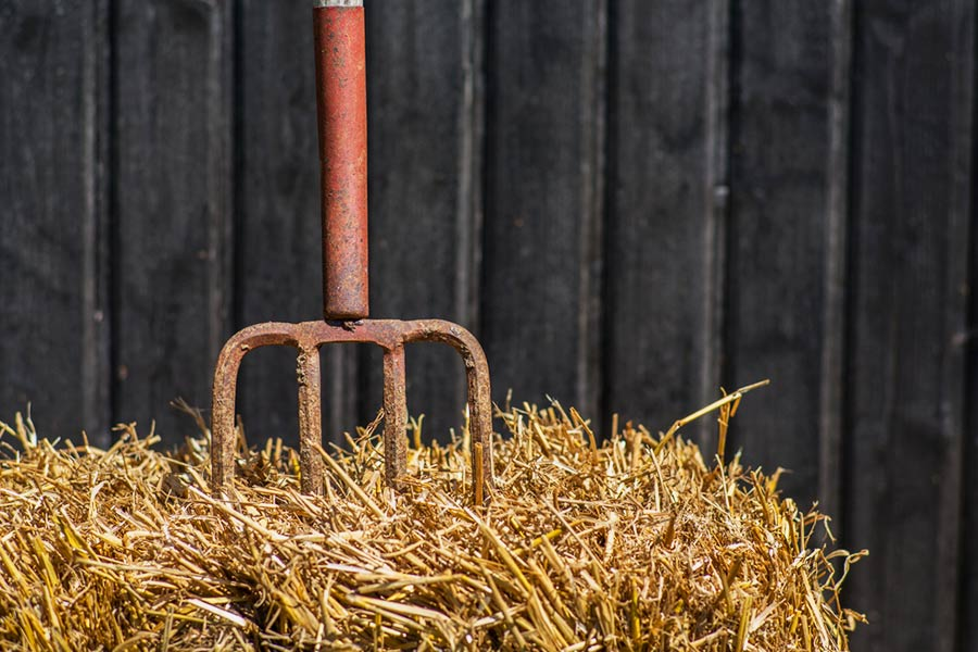 Farmers vs recruiters: Can you help solve the candidate drought?