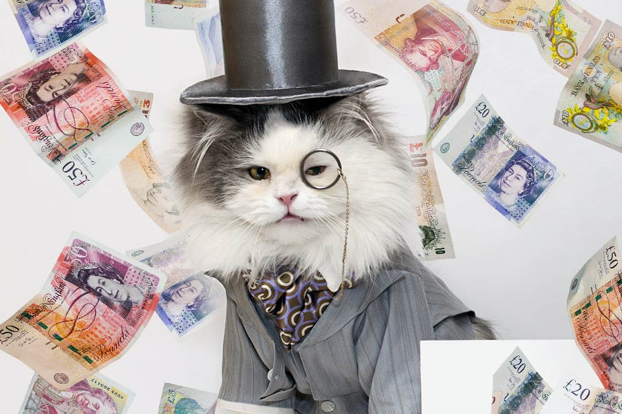 'Fat Cat Thursday' highlights massive CEO salaries