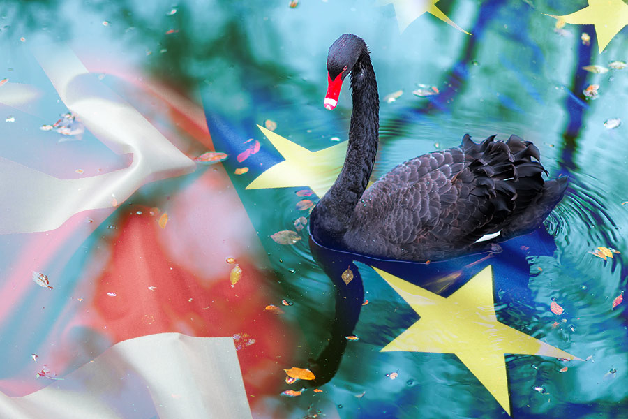 Brexit: A Black Swan event