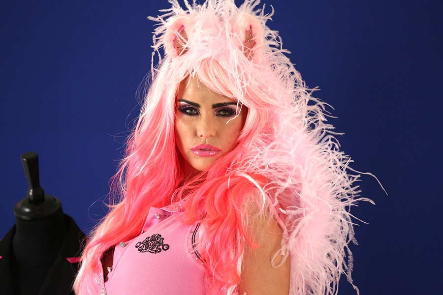 Could you help Katie Price find a job?