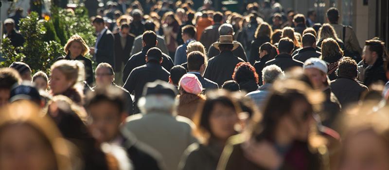 Rec firms are 'flourishing'