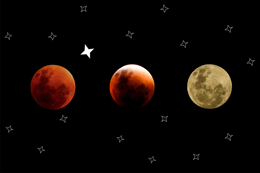 Never mind the Blood Moon, did you see the newest STAR® in the sky?