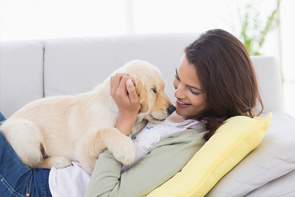Firm implements 'paw-ternity leave' for new pet parents