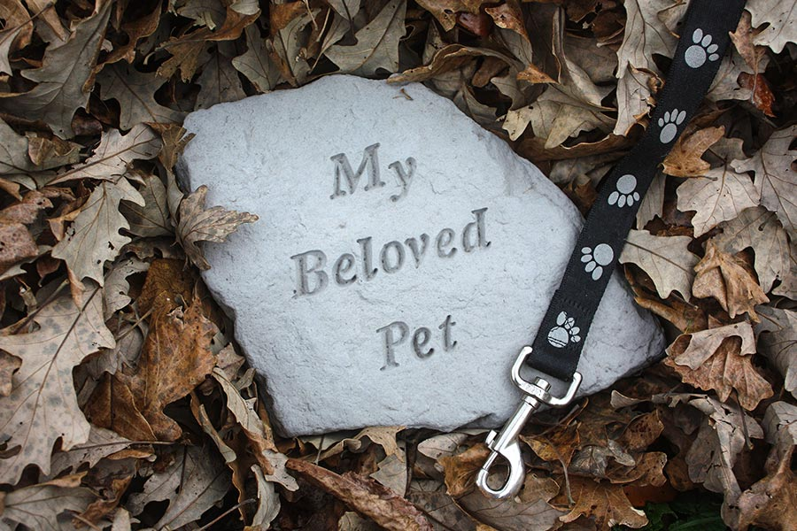 Should you allow staff time off when their pet dies?