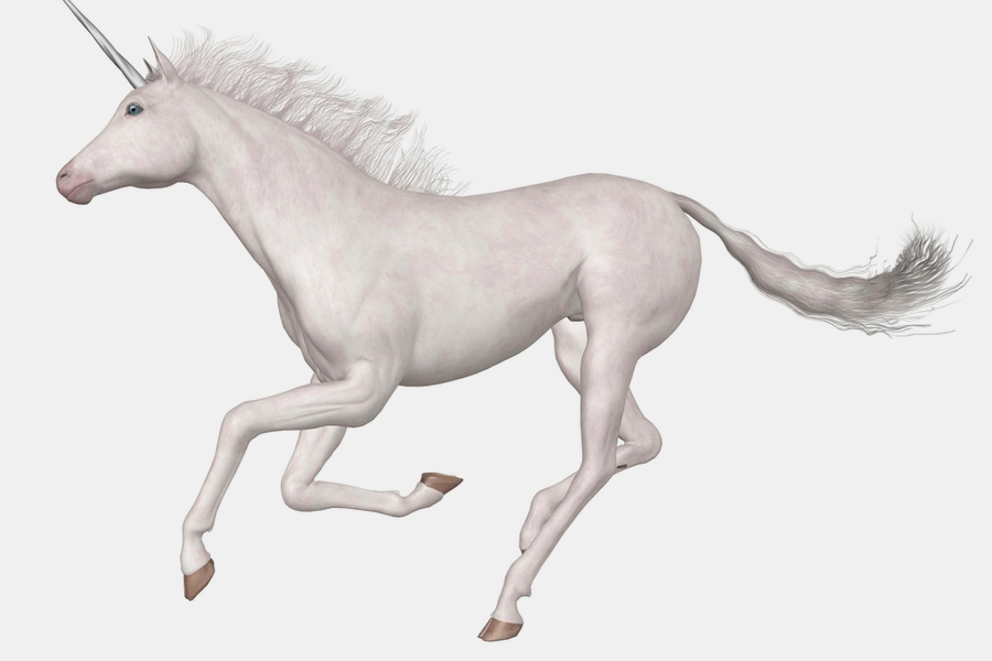 How to catch a Data Science Unicorn