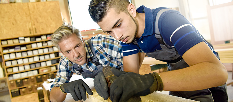 Number of people starting apprenticeships drops by a third