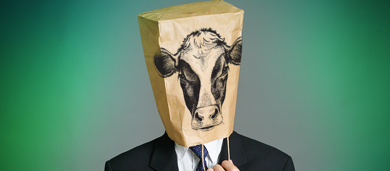 Schuh told candidates to 'moo' & put bags over heads in interview