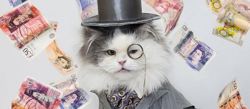 'Fat Cat Thursday' Highlights Massive CEO Salaries