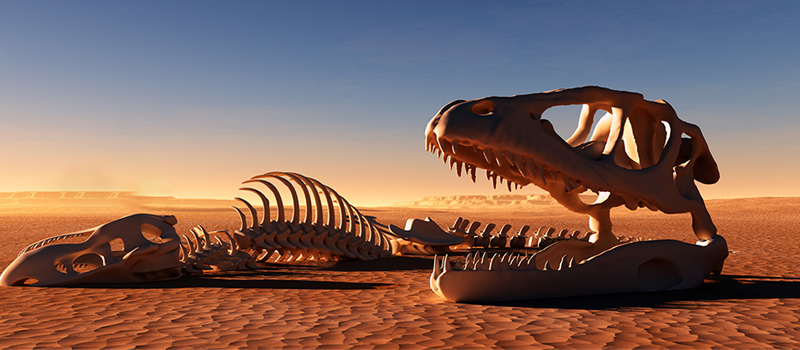 Are L&D teams at risk of extinction?
