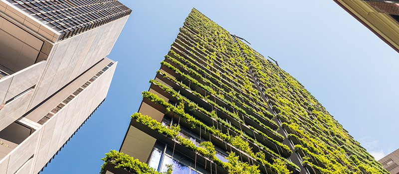 Should sustainable business be a joint responsibility?