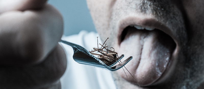 Under-performing employees forced to eat bugs and drink 'urine'