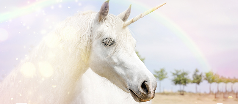 It's time for unicorns to 'grow up'