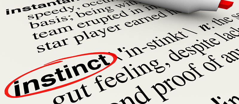 It's not all about gut instinct