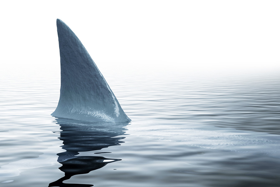 From the jaws of defeat: How to restore credibility in leadership