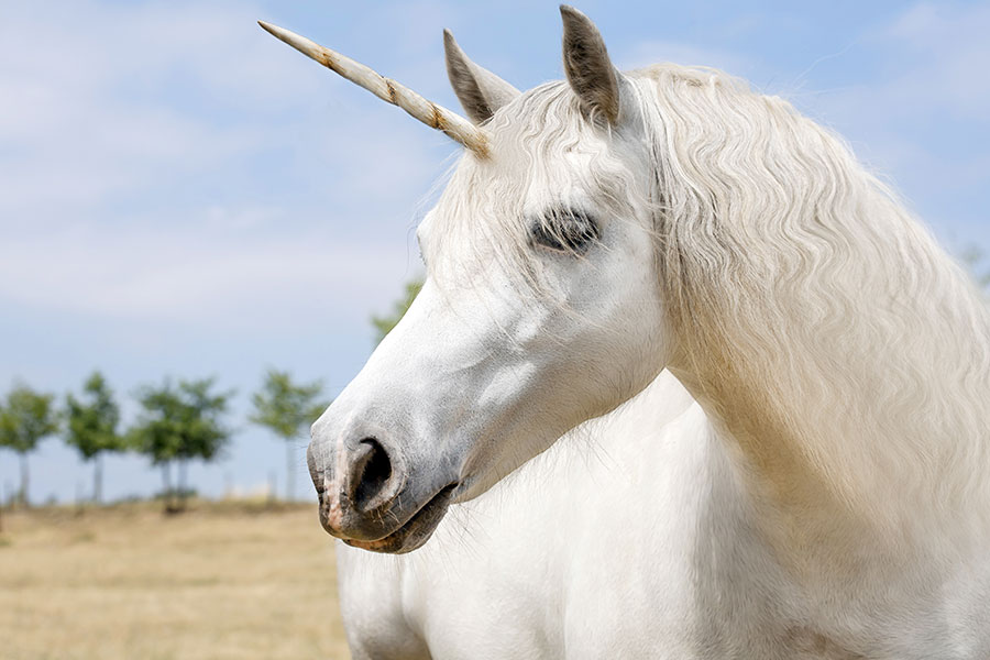 Londoners can catch a unicorn to work this week