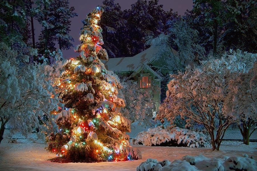 winter weihnachtsbilder. Black Bedroom Furniture Sets. Home Design Ideas