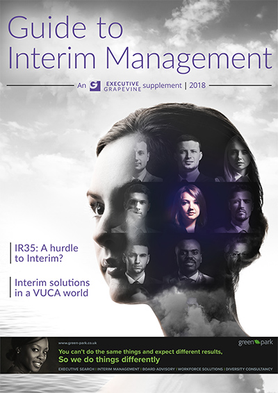 Guide to Interim Management 2018